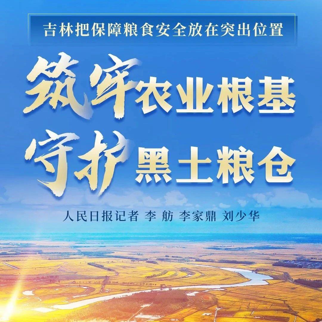 吉林:筑牢农业根基 守护黑土粮仓