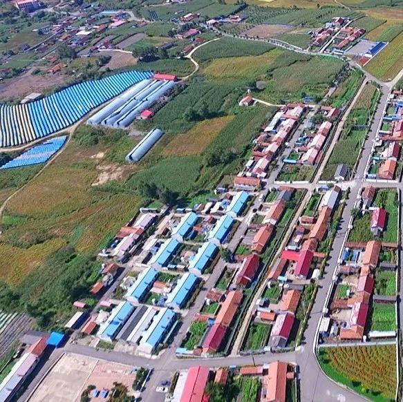 小营子村   调整产业结构 培育富民产业